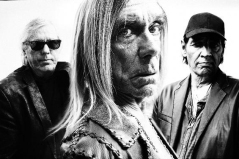 Iggy-and-the-Stooges